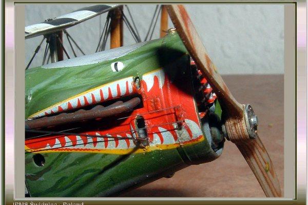 Bristol F2B  Crocodile