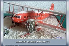 Curtiss R4C-1 Condor