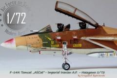 F-14A AliCat I.I.A.F.