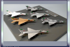 mig-21mf_collection_20121207_1100563029