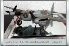 Mosquito-NF-II_01