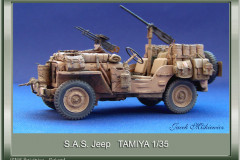 jeep_000_20140707_1186040934