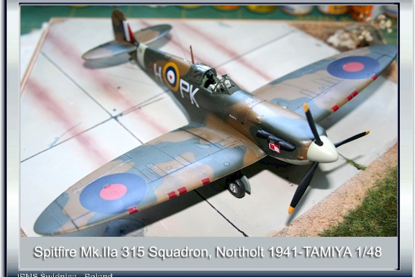 Spitfire Mk.IIa, 315 Polish Squadron