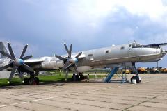 Tu-95 BEAR (Tu-142)